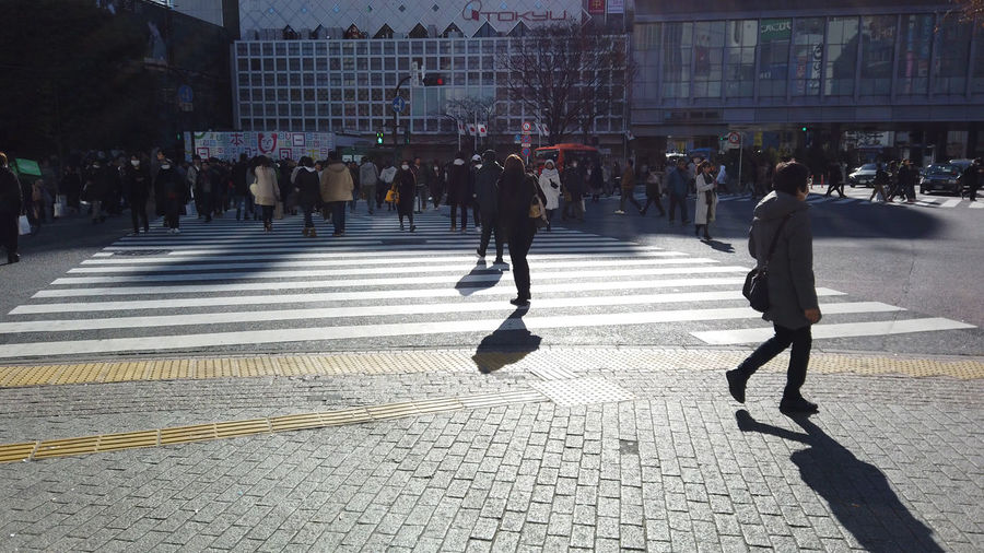 Morning Morning Light People Urban Walking Japan Shibuya Shibuya Crossing Intersection Business Finance And Industry Business Walking Around City Cityscape Street Tokyo Crowd Group Of People Large Group Of People Architecture Building Exterior Real People City Life Built Structure Women Crosswalk Crossing Men Adult Road Shadow City Street Sunlight Outdoors