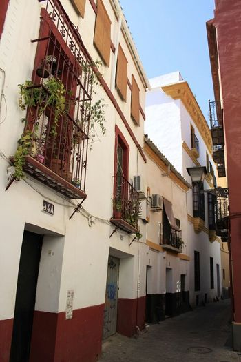 Balcony Long Day The Way Forward No People Low Angle View Sevilla Spain ✈️🇪🇸 Downtown Seville Walkway Tranquility