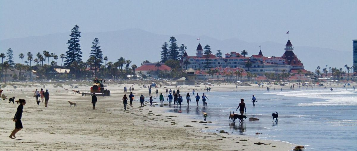 Large Group Of People Beach Nature Sky Lifestyles Real People Water Architecture Outdoors Coronado Beach California California Love