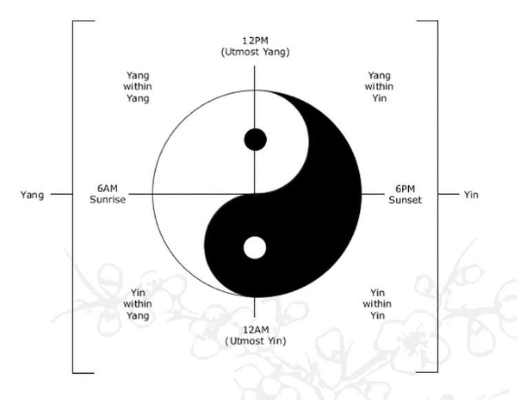 yin&yang Yin & Yang