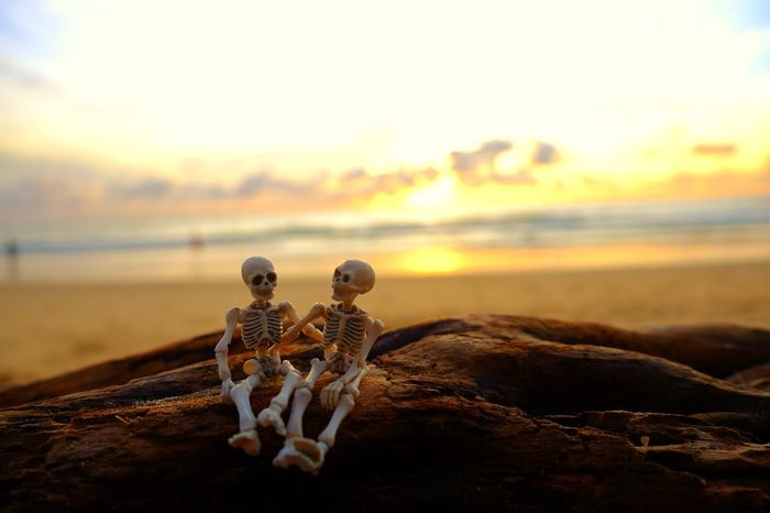 Sunset time💕 Sunset Beach Water Sand Nature Sea Outdoors Day Sky Toy Time Fun Cute Together Skeleton Love ♥ Relax Time  Close-up Nature Holiday♡ Summer Colorful Romantic Moments Of Life Memory