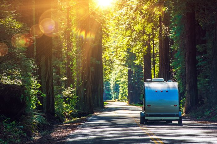 Camper on the Redwood Highway. Scenic Redwood Forest in California, USA Adventure California Camper Camping Redwood Rv Rving Travel Trailer