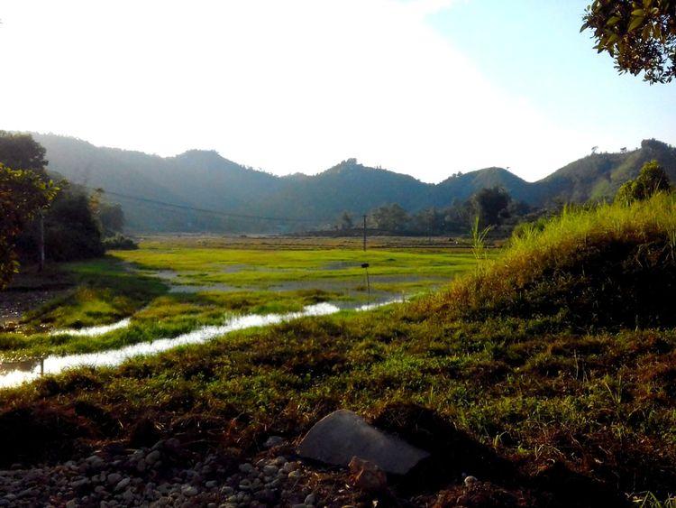 một buổi chiều mùa đông đẹp với ánh nắng vàng ấm áp The Sun Vietnam Landscape Grass Nature Tree No People Mountain Outdoors Shades Of Winter