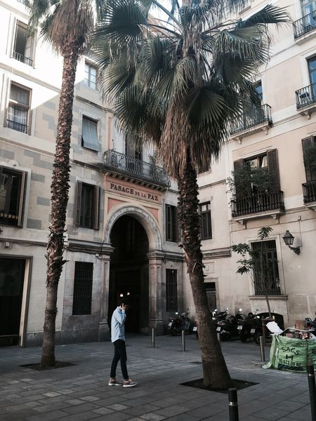 Spring Springtime Sun Plaza Barcelona On The Phone... Street Street Photography Streetphotography People People Watching Palm Trees