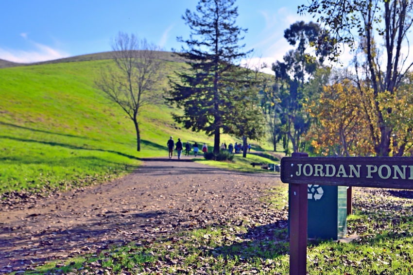 Garin Regional Park 3 Hayward, CA Garin Ranch East Bay Regional Park District Rolling Hills Steep Canyons Hiking Trails Equestrian Trails People Strolling Nature Beauty In Nature Trees Trail Sign Pond Nearby Lush Valley Landscape Landscape_photography Landscape_Collection Landscape_lovers