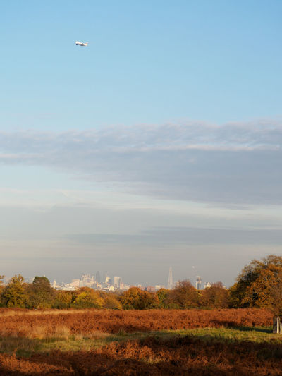 View of airplane flying over the London skyline from Richmond Park (TW10), London Autumn Autumn Colors Postcode Postcards Richmond Park, London Sawyer's Hill TW10 Airplane Autumn Colours Beauty In Nature Day Field Landscape Nature No People Outdoors Scenics Sky Tree