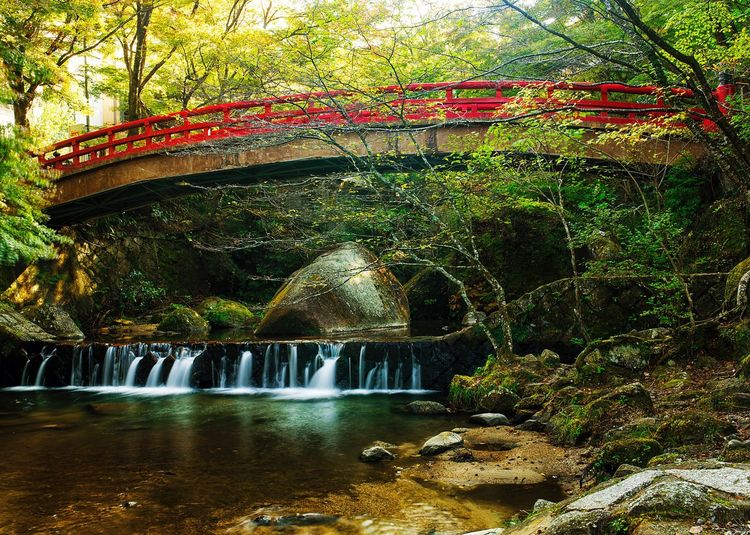 -Bridge of The Time- Tree Water Nature Beauty In Nature Travel Destinations Wood - Material Bridge - Man Made Structure No People Motion River Waterfall Canon 5d Mark Lll Lake Forest Landscape Japan Japan Photography Canonphotography Sigma 35mm Art Nagoya Seto Japanese Garden Autumn Beauty In Nature Season