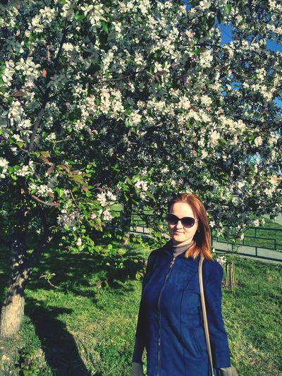 Ann Spring