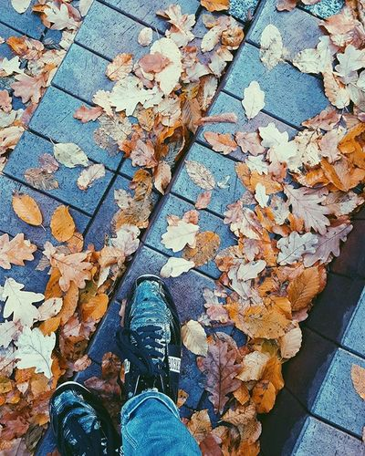 Autumn Natural DirkBikkembergs Lives Lifeisbeautiful