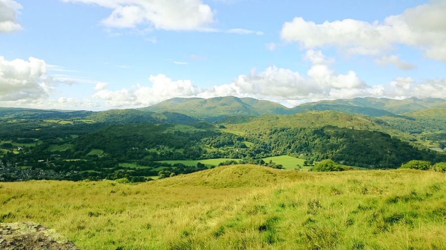 The lake district. Lake District Green Nature Nature Photography Nature_collection Trees Hills Hillside Hilltop Fells Outdoors Outdoor Photography Outside Out For A Walk Natural Natural Beauty Perfect Sunny World Here Belongs To Me