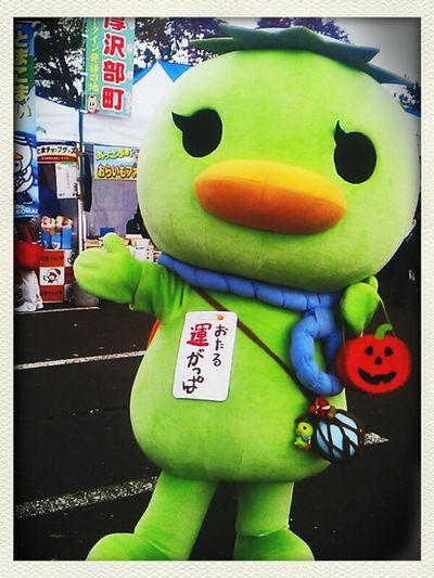 おたる運がっぱ(小樽市) Japan Hokkaido Mascot Characters Of JAPAN Japaneselocalcharacters
