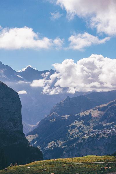 Cozy walk down from Jungfrau to Lauterbrunnen Alps Alps Switzerland Beauty In Nature Cloud - Sky Cow Day Grindelwald Hike Landscape Lauterbrunnen Lauterbrunnen Valley Mountain Mountain Range No People Outdoors Scenics Sky Switzerland Valley Wengen