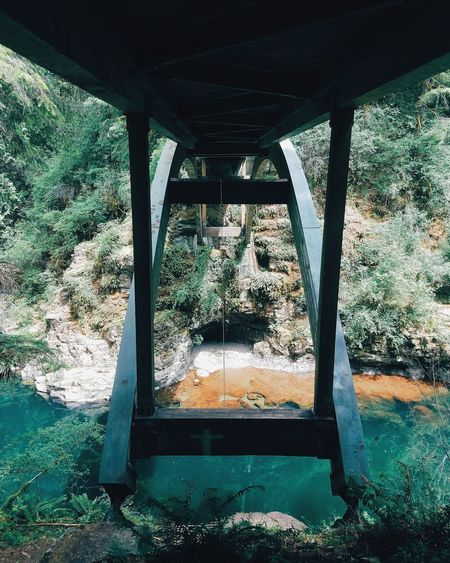 Explore Forest PNW Pacificnorthwest Bridge Artofvisuals Summer Nature Mothernature River
