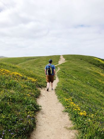 Point Reyes path Real People Green Color Rear View Land Growth Summer Road Tripping Leisure Activity Beauty In Nature Walking Grass Landscape