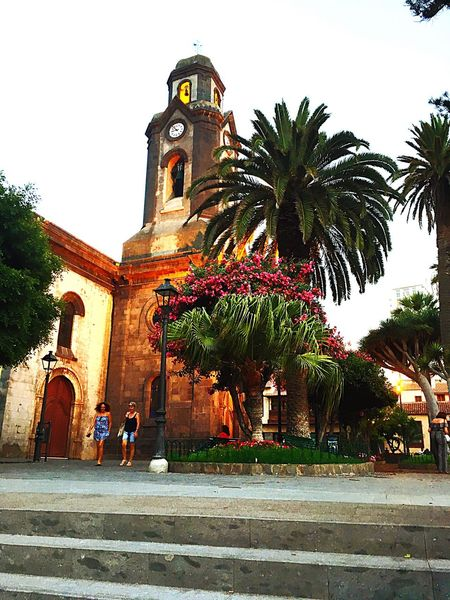 Architecture Built Structure Church Religion Tree Outdoors Palm Tree Building Exterior Low Angle View Tower Clear Sky Spirituality Place Of Worship Arch Teneriffa Vacations Wonderful Place