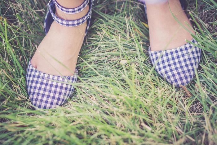 Low Section Human Leg Field Grass Close-up