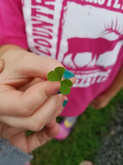 2 leaf clover EyeEm Selects Human Hand Holding Women Close-up Petal Fragility Blooming Flower Head