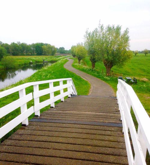 Dutch Landscape Dutch Holland The Great Outdoors - 2016 EyeEm Awards Holland Countryside Friesland Bridge
