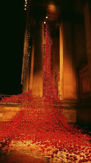 Billnewlandphotos Stgeorgeshall Liverpool Weeping Window Limestreet Poppy Sandhurst Royal British Legion Rememberancesunday Ww1 Ww2 Liverpool, England Original Experiences Colour Pallete Colour Palette Color Palette