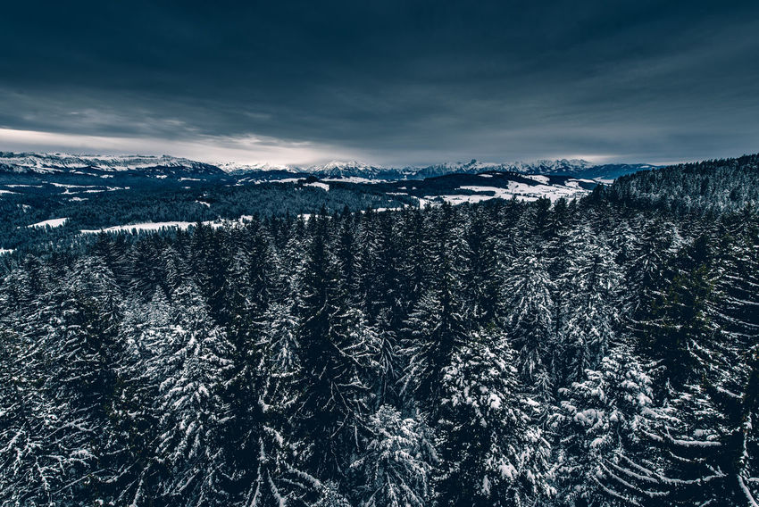 Wintermorgen über dem Emmental mit Stockhorn in der Distanz Beauty In Nature Cold Temperature Day Forest Landscape Mountain Nature No People Outdoors Scenics Sky Snow Tranquil Scene Tranquility Tree Weather Wilderness Area Winter