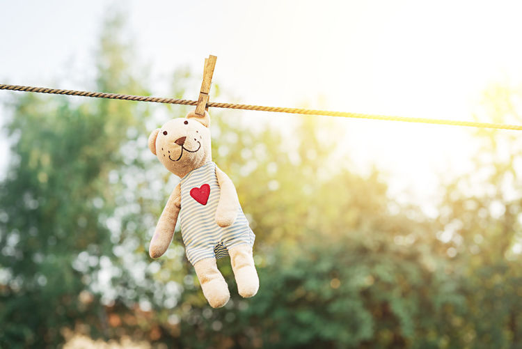 Teddy bear hanging on a clothesline and drying in the sun
