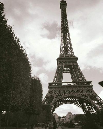 Likeit Loveit Goood Paris Eiffeltower Bushes Astonishing Lushview Beautiful Blackandwhite Astonishingview Breathtaking Photographie  Stole