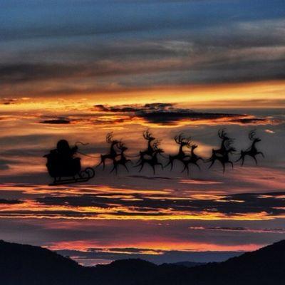 Selamat Natal, Mutlu Noeller, Joyeux Noël, عيد ميلاد مجيد, feliç Nadal, Bo Nadal, Buon Natale, Merry Christmas, Feliz Navidad. Landscape EyeEm Best Shots EyeEm Nature Lover Shootermag Movilgrafía Sunset Silhouettes Sunset