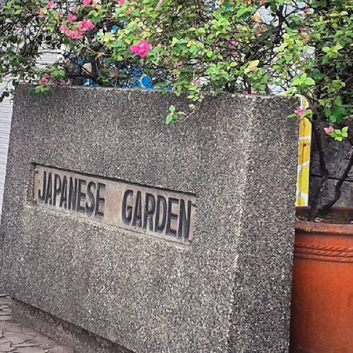 Peace and peace alone, I will give you~ I so love this garden Japanesegarden RizalPark Peace