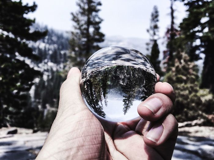 EyeEmNewHere Human Hand Holding Focus On Foreground Tree Human Body Part One Person Day Personal Perspective Outdoors Real People Nature Crystal Ball Close-up Sky People The Week On EyeEm