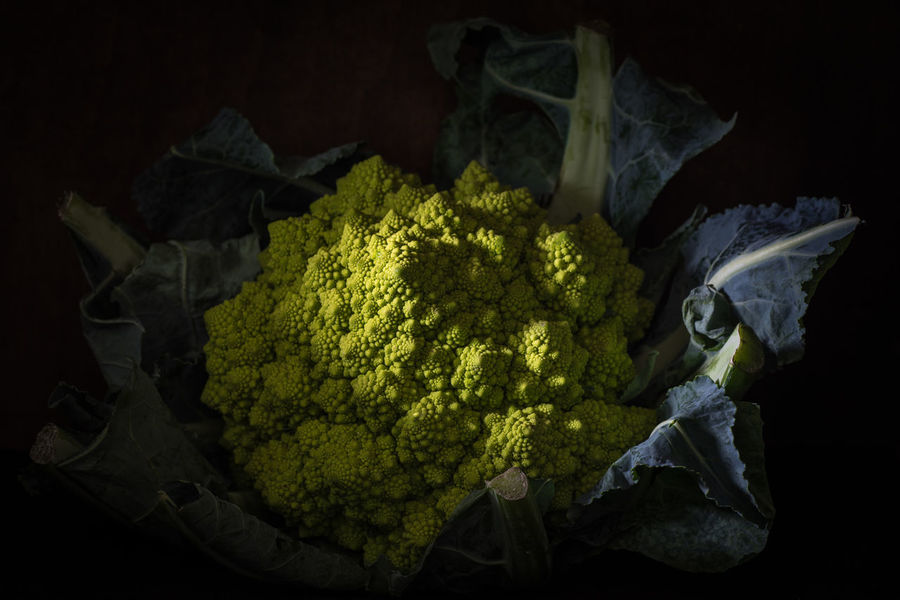 Romanesco dark moody frontal view Close Up Dark Background Dark Mood Daylight Daylight Photography Eat And Drink Food Food And Drink Food Photography Foodie Foodphotography Fresh Frontal Shot Green Healthy Healthy Eating Horizontal View No People Romanesco Vegetable Vegetarian Food