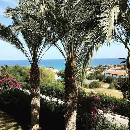 Akdeniz First Eyeem Photo