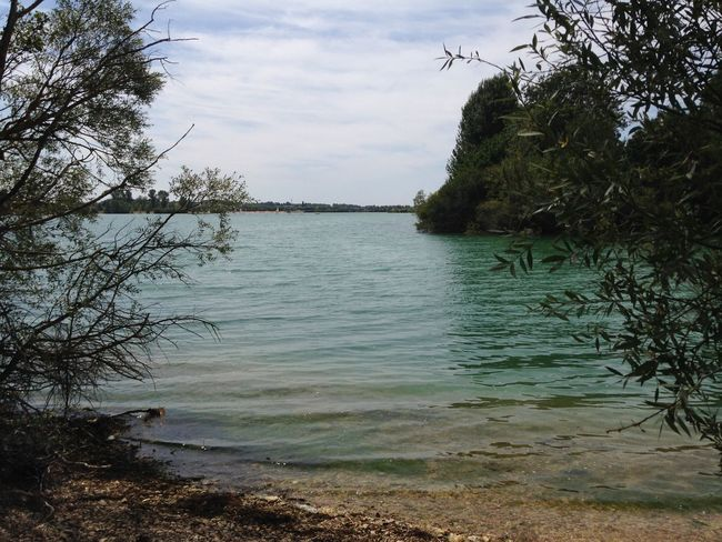 Lac de St Cyr (Vienne - 🇫🇷) Août 2017 Peaceful View Tree Water Lake Beauty Far From City Life Fishing Place No People Tranquil Scene Tranquil View Viewpoint