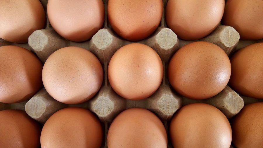 The eggs in a row