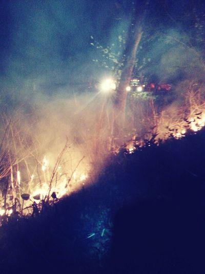 Wildlandfirefighter