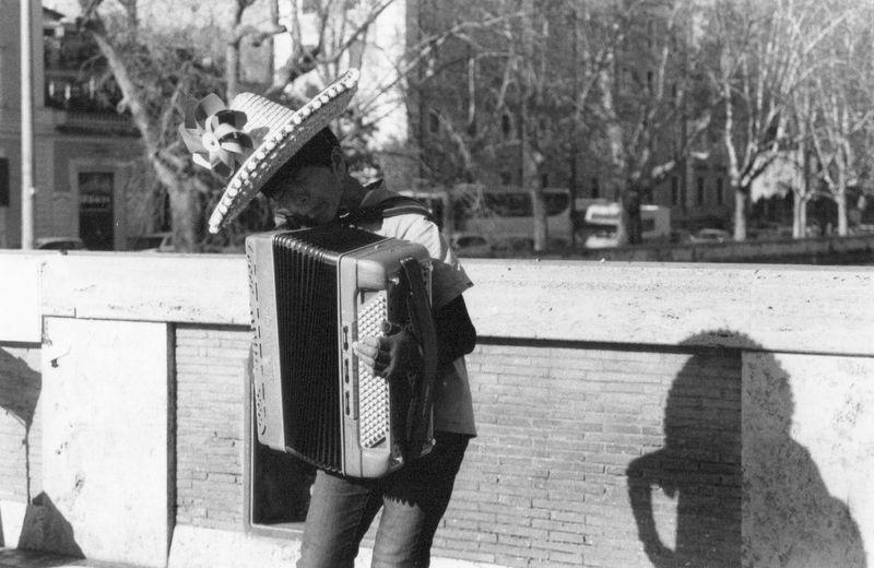 The accordion