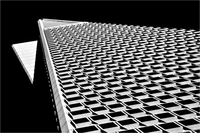 The Pyramid Black And White Portrait Black And White Blackandwhite Photography EyeEm Best Shots Architectural Photography Transamerica TransAmericaBuilding Pyramid San Francisco Architecture Bay Area San Francisco Architecture