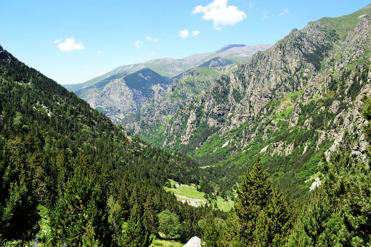 Beauty In Nature Coma De Vaca Landscape Mountain Nature Non Urban Scene Non-urban Scene Queralbs Queralt Tranquil Scene Tranquility Vall De Núria Valle Valley Valley View Valleys