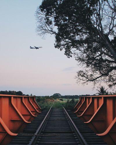 Airplane Clear Sky Day No People Outdoors Railroad Track Sky Train Train Tracks Tree