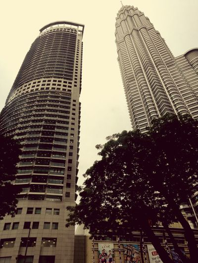 Skyscraper City Outdoors Architecture Building Exterior Modern Tree Cityscape Tower KLCC Twin Towers Kl Malaysia
