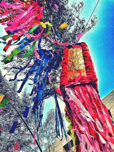 The Star Festival in ASAGAYA SUGINAMIKU