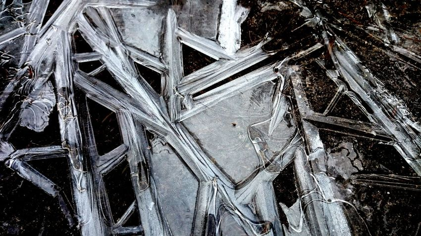 Last days of winter Winter Wintertime Ice Frozen Frost Nature Pattern Abstract Nature Texture Cold Shattered Shards Detail Showcase March Raw Nature Beauty In Nature Outdoors Dutch Landscape