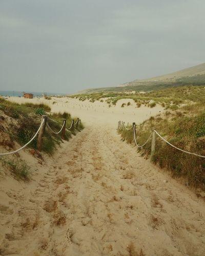 Cala Mesquida Mallorca Beach Beach Photography