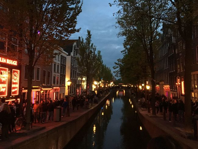 Red light district area at night Amsterdam Amsterdam Canal Amsterdam City Holland Red Light District The Netherlands