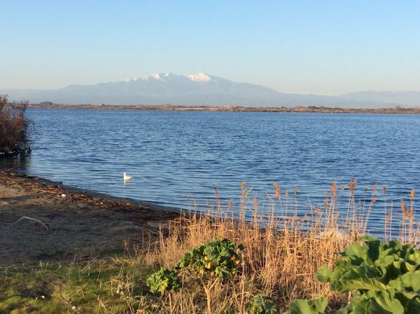 Lac de Canet Beauty In Nature