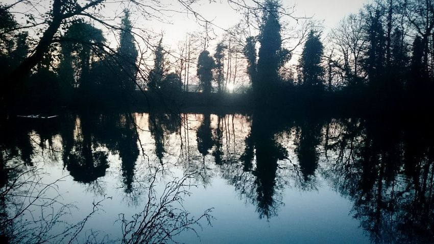 Sunset over the pond at local park. Enjoying Life Eyeemskyshots Sunset Silhouettes Sunset_captures Reflection_collection Reflection Reflections PhonePhotography Xperiaz2 Eyem Nature Lovers  EyeEm Best Shots - Sunsets + Sunrise EyeEm Nature Lover Sunset✨trees✨ Sunset Silhouette