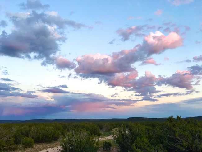 """""""Pastel Eve"""" Fluffy, soft pastel colored clouds linger over the plateau's and country roads of Central New Mexico on a late Summer evening bringing a feeling of peace and contentment to the casual observer and the photo journal inclined photographer. Plateau Country Road Dusk Sunset Sunset_collection Golden Hour Sundown Evening Sky Clouds Cloudscape Clouds And Sky Dramatic Sky New Mexico Skies New Mexico Photography New Mexico"""