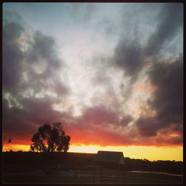 Sunset at Lilydale lake ☀️☀️☀️ Sunset WhileIwaswalking Lilydalelake Pretty Summer Views