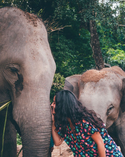 Woman touching elephant while standing in zoo