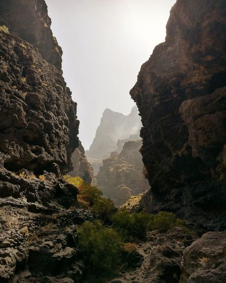 Mountain Fog Landscape Mountain Peak Beauty In Nature Islandphotography Eyem Collection EyeEm Nature Lover Island Life Canarias HuaweiP9Photography Oceanview Huawei P9 Leica Tenerife Huaweiphotography Canary Islands HuaweiP9 Beauty In Nature Masca Masca, Tenerife Mountain Range Travel Destinations Valley Rock Formation Sunshine