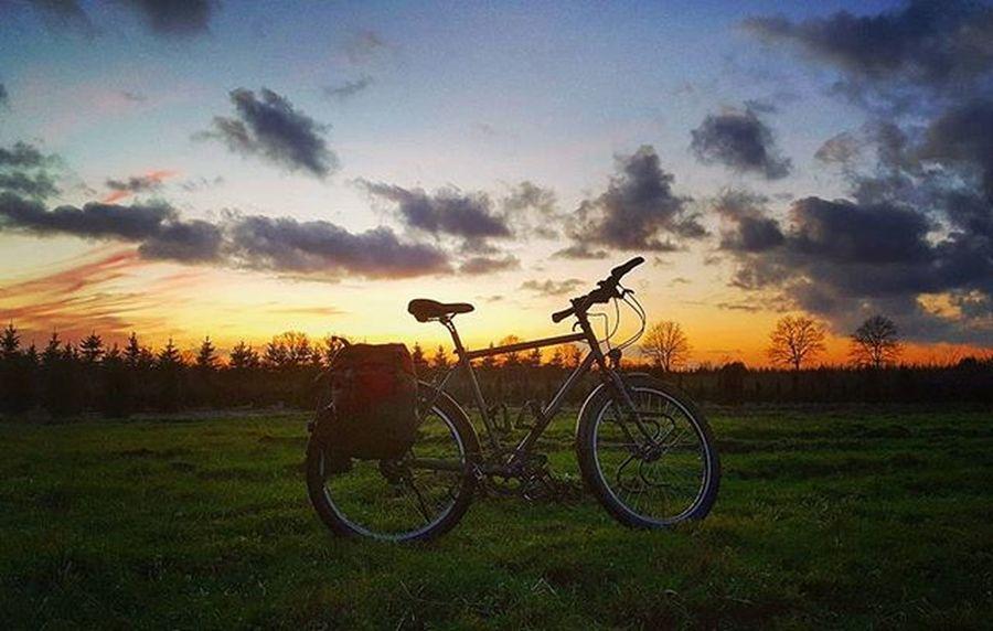 Last time Biketowork this year. Nearly 4.500 km in 2015. Next year 5.000 km! 💪 Have a nice Christmas time! 🎅 Instamood Picoftheday Cycling Fahrrad Fahrradtour Biketouring Commuting Hamburg Fahrradfahren Welovehh Igershamburg Welovehh 😚 Bike2work Bicycle Norwid Rohloff Magura Norwidgotland Ortlieb Sport Fitness Afterwork Biking fitfornix